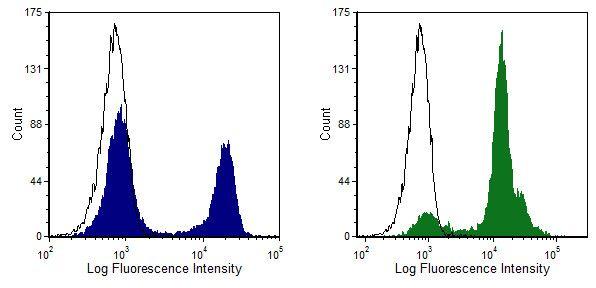 CD8 alpha Antibody (MA5-17595) in Flow Cytometry