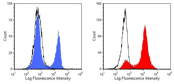 CD8 alpha Antibody (MA5-17602) in Flow Cytometry