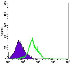 CD94 Antibody (MA5-15817) in Flow Cytometry
