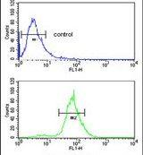 CDH20 Antibody (PA5-26869) in Flow Cytometry