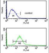 CDIPT Antibody (PA5-26054) in Flow Cytometry