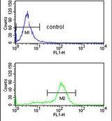 CDK5RAP1 Antibody (PA5-26045) in Flow Cytometry