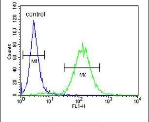 CES2 Antibody (PA5-24157) in Flow Cytometry