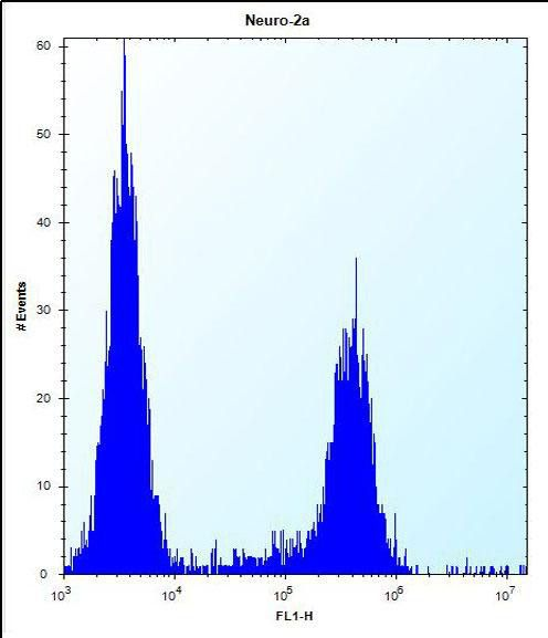 RRP36 Antibody (PA5-24273) in Flow Cytometry