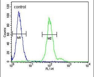 Complement Factor B Antibody (PA5-26047) in Flow Cytometry