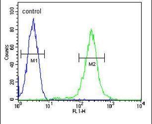 Properdin Antibody (PA5-26939) in Flow Cytometry