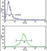 CHIA Antibody (PA5-26401) in Flow Cytometry
