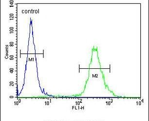 LURAP1L Antibody (PA5-24528) in Flow Cytometry