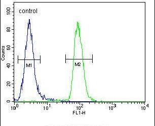 CIRH1A Antibody (PA5-26950) in Flow Cytometry
