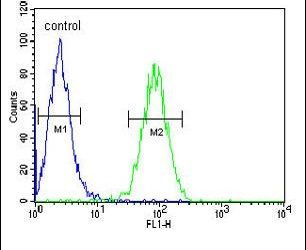 Claudin 22 Antibody (PA5-23738) in Flow Cytometry