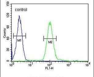 COQ7 Antibody (PA5-25774) in Flow Cytometry