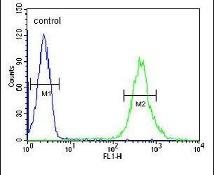 CRIP1 Antibody (PA5-24643) in Flow Cytometry