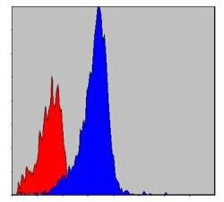 CrkL Antibody (MA5-15867) in Flow Cytometry
