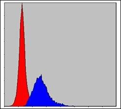 Crk Antibody (MA5-15891) in Flow Cytometry