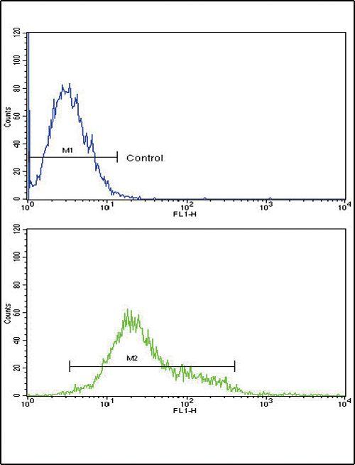 CSF1R Antibody (PA5-25974) in Flow Cytometry