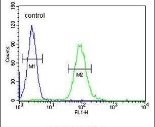 GM-CSF Antibody (PA5-24184) in Flow Cytometry
