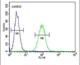 Cathepsin F Antibody (PA5-13511) in Flow Cytometry