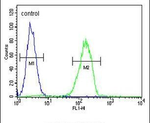 Cathepsin S Antibody (PA5-14271) in Flow Cytometry