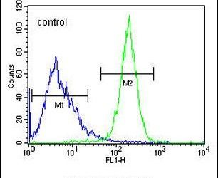 CWC22 Antibody (PA5-24276) in Flow Cytometry