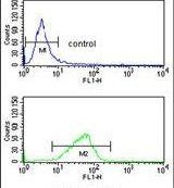 CXXC4 Antibody (PA5-26391) in Flow Cytometry