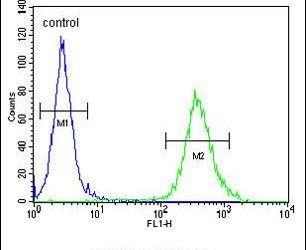 CYB561D1 Antibody (PA5-24523) in Flow Cytometry