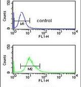 CYP3A43 Antibody (PA5-26009) in Flow Cytometry