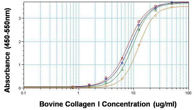 Collagen I Antibody (MA1-141) in ELISA