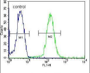 DACT1 Antibody (PA5-25814) in Flow Cytometry