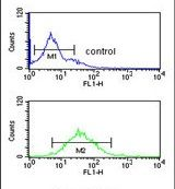 DENND1A Antibody (PA5-26914) in Flow Cytometry