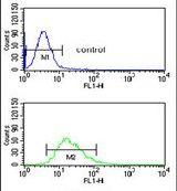 DMC1 Antibody (PA5-26337) in Flow Cytometry