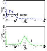 Destrin Antibody (PA5-26197) in Flow Cytometry