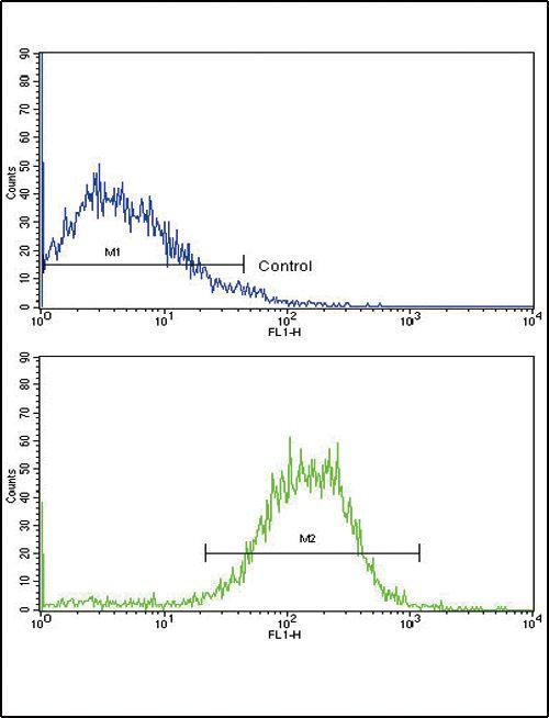 E-cadherin Antibody (PA5-11548) in Flow Cytometry