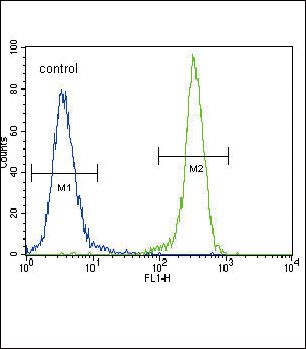 E-cadherin Antibody (PA5-11549) in Flow Cytometry