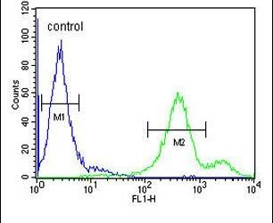 EBPL Antibody (PA5-25639) in Flow Cytometry