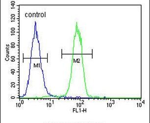 ECE1 Antibody (PA5-24563) in Flow Cytometry