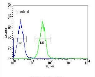 EFHC2 Antibody (PA5-26761) in Flow Cytometry