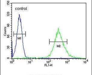 ENASE Antibody (PA5-24531) in Flow Cytometry
