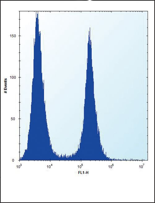 ENO1 Antibody (PA5-13459) in Flow Cytometry