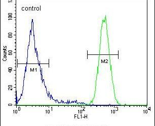 HIF-2 alpha Antibody (PA5-24200) in Flow Cytometry