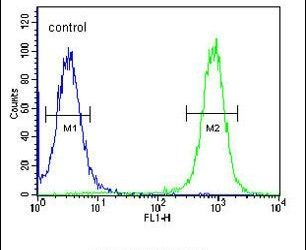 EPC2 Antibody (PA5-25141) in Flow Cytometry