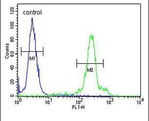 ERMN Antibody (PA5-24818) in Flow Cytometry