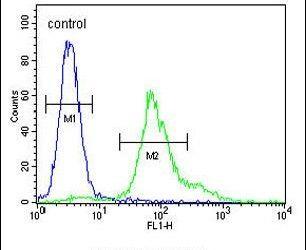 ERO1LB Antibody (PA5-25142) in Flow Cytometry