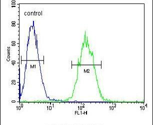 ETS1 Antibody (PA5-24211) in Flow Cytometry