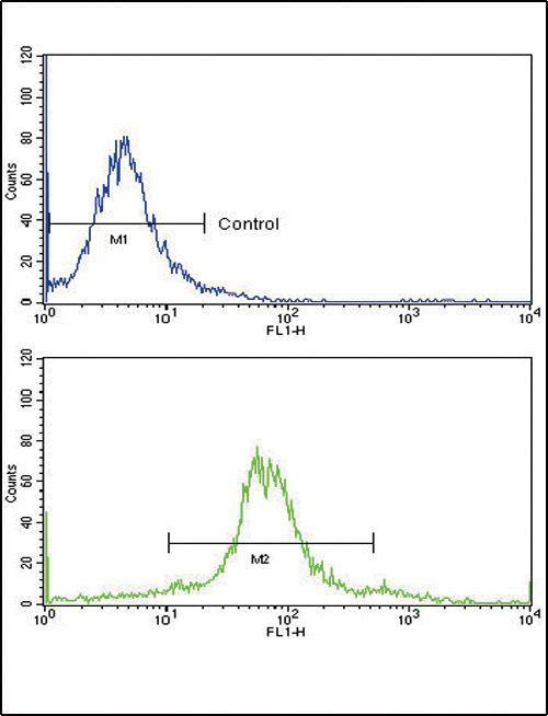 ETV4 Antibody (PA5-13595) in Flow Cytometry