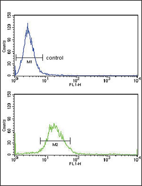 EXT2 Antibody (PA5-26408) in Flow Cytometry