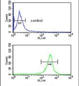 EXTL3 Antibody (PA5-26058) in Flow Cytometry