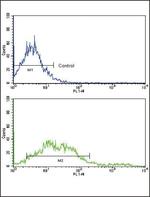 EphA2 Antibody (PA5-14574) in Flow Cytometry