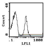 Erythroid Cells Antibody (MA1-70078)
