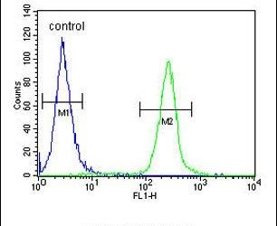 FAM20A Antibody (PA5-24891) in Flow Cytometry
