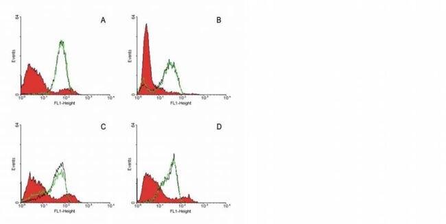 FAS Antibody (MA1-19024)